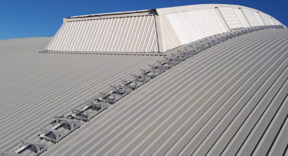 Roof step